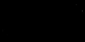 everphone_Case-Study_MILES_Logo_600